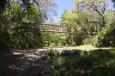 Ravine Gardens Suspension Bridge by WIlly Volk, via Flickr, PALTAKA FL