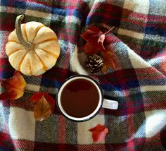 FALL = pumpkins, blankets, colored leaves, pine cones, and warm beverages.
