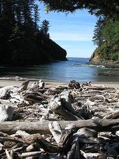 ...another favorite spot...  Dead Man's Cove, WA ...sideways  ;)