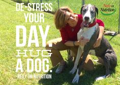 De-stress your day. Hug a dog. -Neily on Nutrition #neilysquoteoftheday http://NeilyonNutrition.com (The model is Lex - officially became Neily's fur-kid December 2015 through Great Dane Rescue of North Texas)