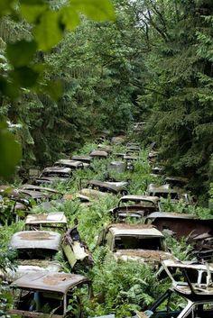 Cementerio de autos, Ardennes, Bélgica: Muchos soldados estadounidenses en el frente occidental durante la Segunda Guerra Mundial, se compraron coches para uso personal. Cuando terminó la guerra, resultaron ser demasiado caros para enviar a casa y muchos se quedaron abandonados en este cementerio espeluznante.