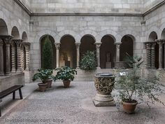 Natural light in a beautiful colonnaded space in the Cloisters medieval museum in NYC