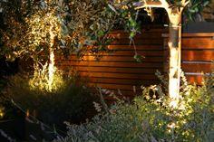Roof Terrace Design 5 | Roof Terrace Design | Garden Design | Garden Design London | lighting in the pots