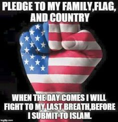 I pledge my love, my faith, my life to JESUS CHRIST, my savior. I will fight to protect what God has given me. I Will Fight, Political Views, Our Country, American Pride, American Flag, God Bless America, Freedom, Faith, Thoughts