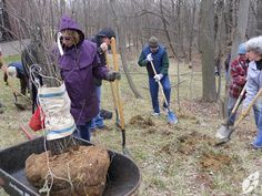 TreeKeepers 101 Class by BCRP, via Flickr