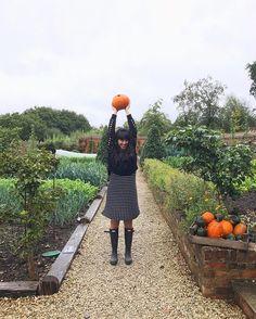 HEMSLEY + HEMSLEY is Jasmine and Melissa Hemsley. Melissa Hemsley, Hemsley And Hemsley, Mediums Of Art, Halloween Inspo, Slytherin Aesthetic, Free Food, Photo Shoot, Fiction, Yummy Food