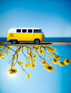 Yellow VW van and flowers - Don't usually like yellow, but i'm loving this photo.