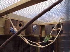 Nestkasten voor vogels