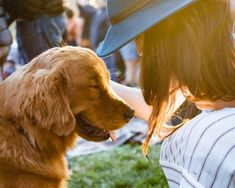 "<div style=""text-align: center;""><strong>Dogs are more than just cuddly companions — research continues to show that pets bring real health benefits to their owners. Having a dog around can lead to lower levels of stress for both adults and kids. They've been found to decrease the risk of asthma in children and have been linked to lower blood pressure.<span id=""zoho_button_ext"" style=""display: none; position: absolute; z-index: 99999999; width: 80px; height: 31px; background-image…"