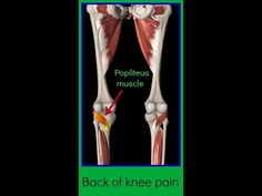Physical Therapy Video: back of knee pain, Popliteus muscle tightness - YouTube