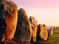 ∆...The Carnac stones are a dense collection of more than three thousand standing stones around the French village of Carnac—the largest such collection in the world.  The stones were erected between 4500 and 3300 B.C.