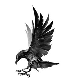 A raven is a popular figure in Norse mythology and that is reflected in Viking art Silhouette Tattoos, Crow Silhouette, Crows Drawing, Bird Drawings, Tattoo Drawings, Flying Bird Drawing, Art Viking, Viking Symbols, Viking Raven