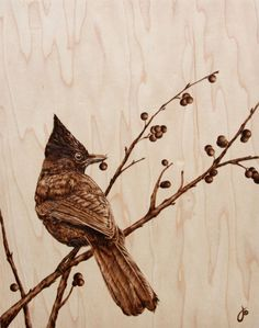 This is called Pyrography (burnt wood). And it's beautiful! So beautiful..... By Julie Bender