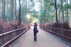 #嵐山 #竹林の道