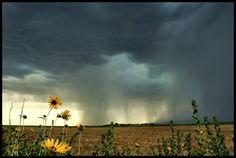 Afternoon in Kansas by FramedByNature.deviantart.com on @deviantART