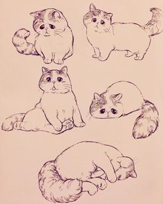 Draw Cats - My list of beautiful animals Cute Animal Drawings, Animal Sketches, Art Drawings Sketches, Cartoon Drawings, Cartoon Art, Cool Drawings, Hipster Drawings, Drawing Animals, Art Illustrations