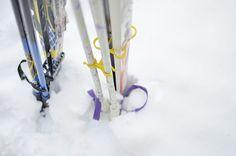 http://pienilintu.blogspot.fi/2015/02/hiihtolomalaiset.html