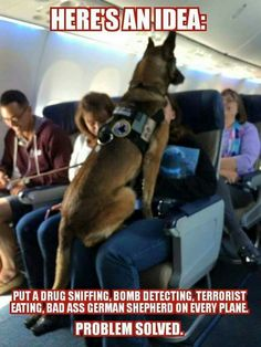 Place a drug sniffing, bomb detecting, German Shepherd in EVERY AIRPLANE!!!
