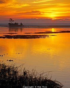 Sunrise at Cape Romain National Wildlife Refuge, South  Carolina   Atlantic Ocean intertidal waters