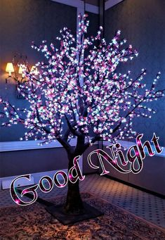 Good Night To You, Good Night Love Quotes, Beautiful Good Night Images, Good Night Prayer, Good Night Sweet Dreams, Good Night Moon, Good Morning Good Night, Good Morning Images, Good Night Flowers