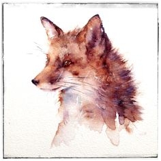 Reynard the fox watercolour painting by Jane Davies available as a LIMITED EDITION PRINT