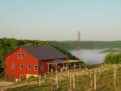 vernon vineyards wisconsin - Google Search