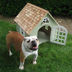 expensive dog houses by best friends home swedish