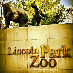 Lincoln Park Zoo a beautiful zoo located on the north side, did I we mention it's free??
