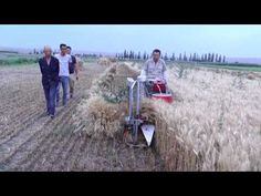 BCS 622 Reaper Binder - YouTube