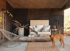 Get exotic, South American-inspired decorating ideas from artist Patricia Larsen's serene home near the tip of Baja, Mexico.
