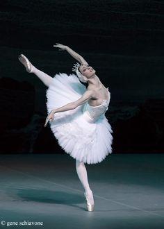 Olga Smirnova, Swan Lake, Bolshoi Ballet taken at Lincoln Center on their US tour (Photo: Gene Schiavone) Ballet Du Bolchoï, Bolshoi Ballet, Ballet Dancers, Ballerinas, Royal Ballet, Swan Lake Ballet, Ballet Pictures, Ballet Images, Dance Pictures