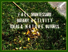 Fall Montessori Botany Activity Ideas & Nature Outings from My Confessions of a Montessori Mom Blog