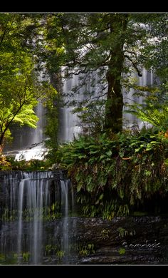 Tasmanian wilderness- Russell Falls, Mount Field National Park, central highlands of Tasmania, Australia Beautiful Waterfalls, Beautiful Landscapes, Places To Travel, Places To See, Places Around The World, Around The Worlds, Wonderful Places, Beautiful Places, Mother Nature