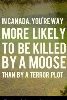 Meanwhile In Canada.. Group Uses Moose In Ad To Oppose Harper's Anti-Terror Bill
