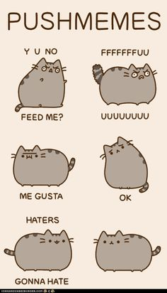 Pusheen the cat: Pushmeme's. :) LOVE THIS!!! OMG!!!
