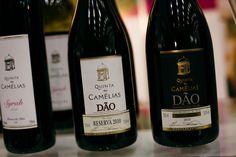 Vinhos e Sabores 2015: Quinta das Camélias