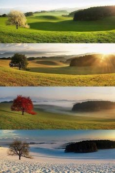 Different Seasons, Four Seasons, Creative Photography, Nature Photography, Balloons Photography, New Perspective, Night Vision, Amazing Nature, Pretty Pictures