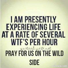 Lyric Art of Wild Side by Motley Crue