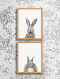 Heads or Tails? Bunny rabbit nursery art from The Crown Prints