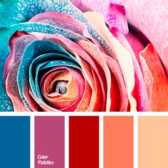 Color Palette  #3771