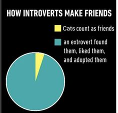 As the extrovert YASSSSS! That's how I have my best friend<<I honestly still dont know if im an extrovert or introvert Introvert Humor, Introvert Problems, Memes Humor, Funny Memes, Funny Shit, The Funny, Hilarious, Funny Stuff, Infp