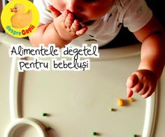 Alimentele degetel (bucatele de papica): cand, ce si cum Baby, Baby Bottle, Food, Newborns, Baby Baby, Infants, Child, Toddlers