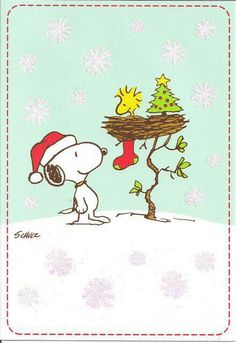 Snoopy and Woodstock at Christmas time Peanuts Christmas, Noel Christmas, Winter Christmas, Vintage Christmas, Xmas, Charlie Brown Christmas Decorations, Peanuts Thanksgiving, Christmas Stocking, Christmas Cards