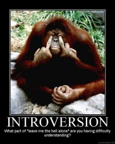 Quiverfull and the Introvert: Where Do You Get Your Energy
