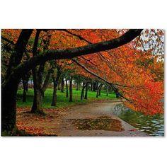 Trademark Fine Art Tidal Basin Autumn 2 inch Canvas Art by CATeyes, Size: 30 x 47, Multicolor