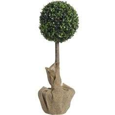 Hill Interiors Artificial Boxwood Ball Tree 2 Foot Green >>> Be sure to check out this awesome product.