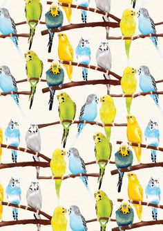 Budgie Pattern Print by ByKellyAttenborough on Etsy I'm reupholstering the whole house.