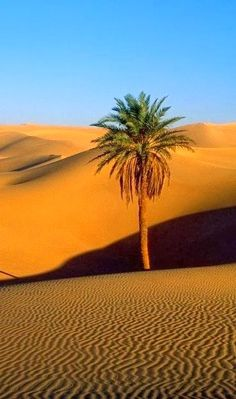 Niger is one of the hottest places in the world and is part of the sahara desert