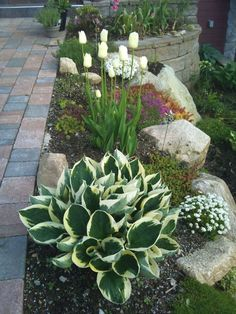 60 Awesome Front Yard Rock Garden Landscaping Ideas - Flower Garden İdeas İn Front Of House Garden Ideas To Make, Garden Yard Ideas, Diy Garden, Shade Garden, Backyard Ideas, Garden Art, Rocks Garden, Gardening With Rocks, Sloped Backyard