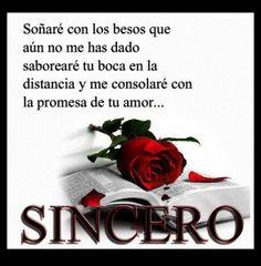 Imagen de amor de una rosa roja encima de una biblia - http://www.imagenesdeamor.pro/2013/07/imagen-de-amor-de-una-rosa-roja-encima-de-una-biblia.html